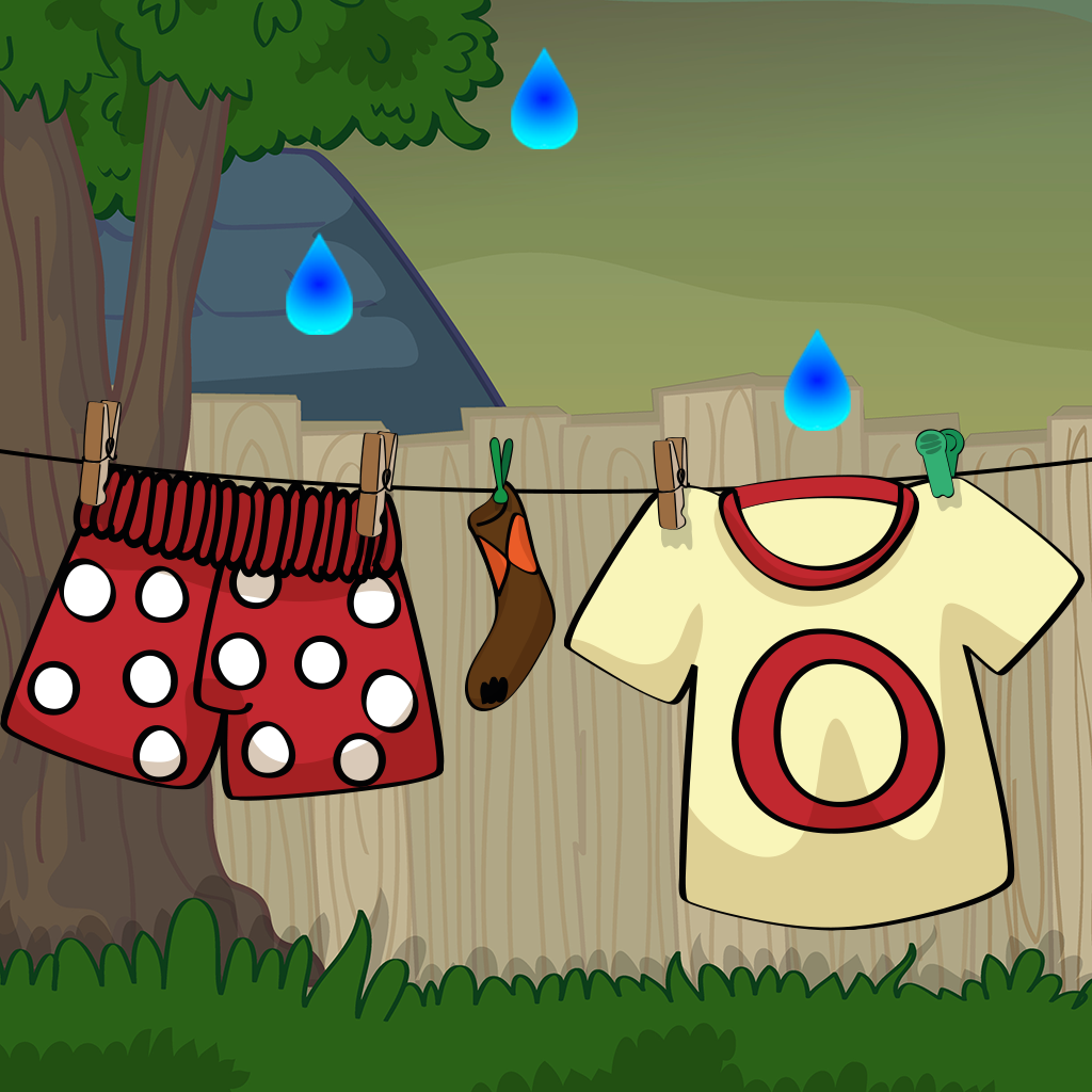 Laundry Mania